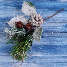 "Decor ""Winter charm"" 24 cm bump two acorns"