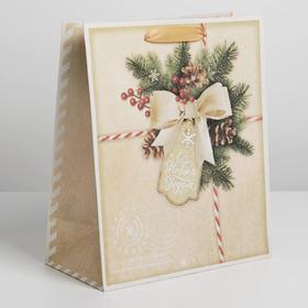 Пакет крафтовый вертикальный «Поздравляю с Новым годом!», ML 23 × 27 × 8 см