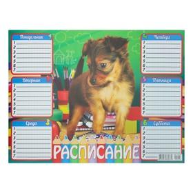 Расписание 'Собака' А4 Ош