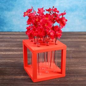 """Кашпо деревянное 15.5×15.5×16.5 см с 9 колбами """"Квадрат"""", красный"""