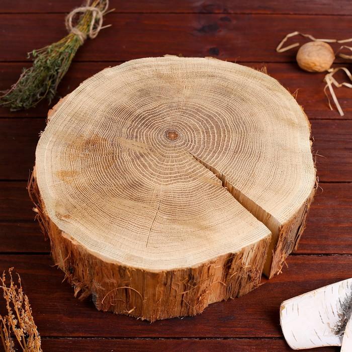 Спил дуба, шлифованный с одной стороны, диаметр 20-25 см, толщина 8-9 см