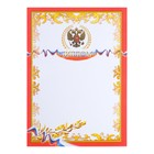 "Diploma ""Symbols of the Russian Federation"" red frame, gold twig"