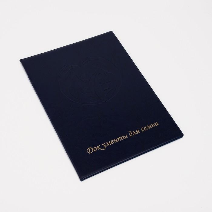 Обложка документы д/семьи, 22,5*1,0*31, с вкладышами ПВХ, синий