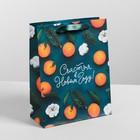 Пакет ламинированный вертикальный «Счастья в Новом Году», MS 18 × 23 × 8 см