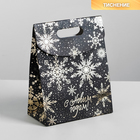 Пакет с клапаном «Чудесного Нового года», 12 х16 х6 см.
