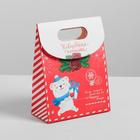 Пакет с клапаном «Почта счастья», 12 х16 х6 см.