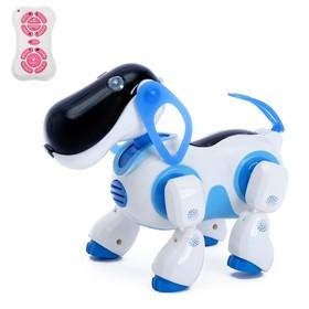 Робот радиоуправляемый, интерактивный «Киберпес Ки-Ки», русское озвучивание, световые эффекты, цвет синий