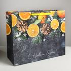 Пакет ламинированный горизонтальный «Мандарины», XL 49 × 40 × 19 см