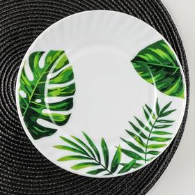 Тарелка десертная Доляна «Лист папоротника», d=21,5 см