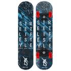 Скейтборд Street lifestyle, размер 62x16 см, колёса PVC d-50 мм, цвета микс