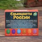 Набор для раскопок «Самоцветы России» - фото 105605446