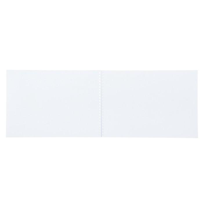 Альбом для рисования А4, 40 листов на гребне «Амурский тигр», бумажная обложка - фото 373638996