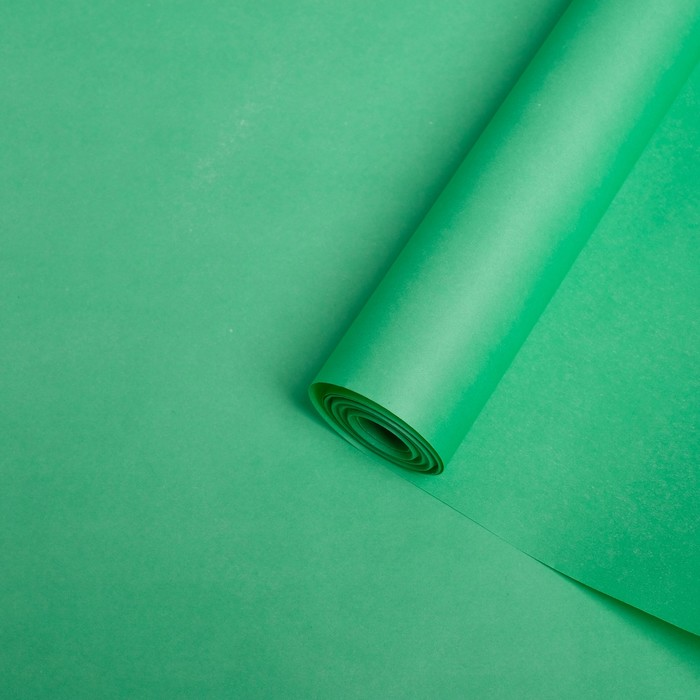 Бумага упаковочная крафт двусторонняя, салатовый, 0,5 х 10 м, 70 г/м² /м2