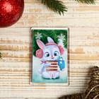 "Magnet acrylic ""honey Bunny"" rectangle 5,2x7,7 cm"
