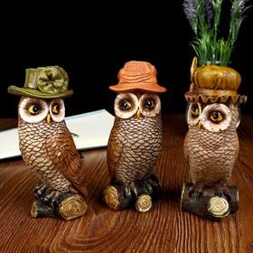 "Souvenir Polyresin ""Owl in a hat on a log"" 3 PCs set 15,5x7,5x5,5 cm"