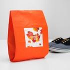 """Мешок для обуви """"Осенняя пора"""""""