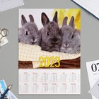 "Calendar sheet A4 ""symbol of the year - 2020 - 4"""