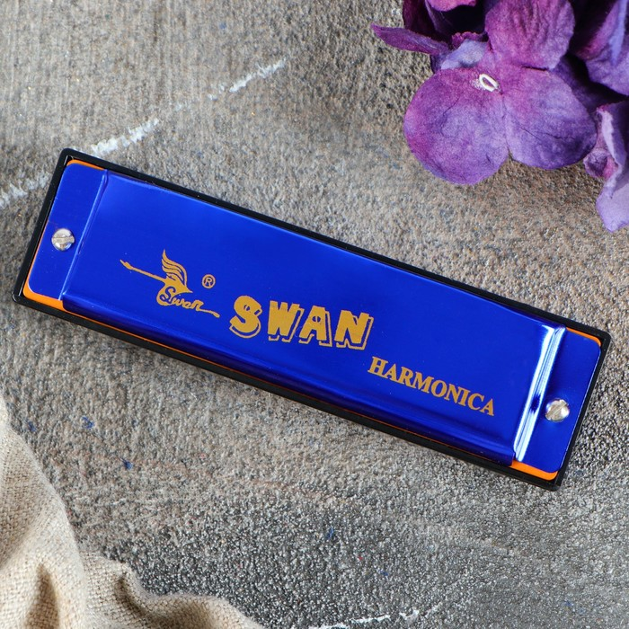 Губная гармошка Swan SW1020-4  МИКС