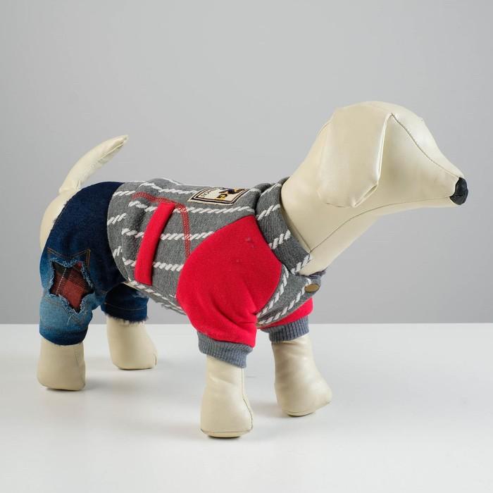 Комбинезон для собак, еврозима на меховом подкладе, XS (ОШ 18-22, ОГ 27-32, ДС 20 см), серый   43337