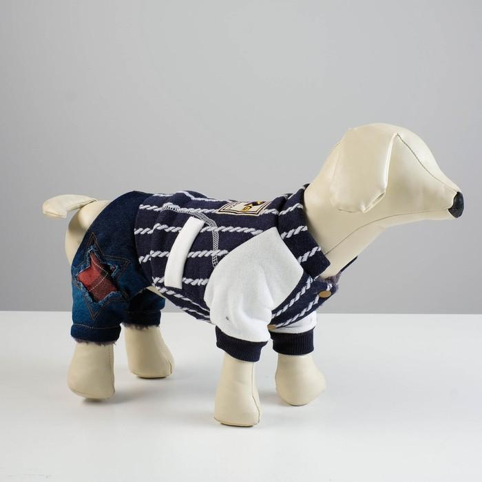 Комбинезон для собак, еврозима на меховом подкладе, XS (ОШ 18-22, ОГ 27-32, ДС 20 см), синий   43337