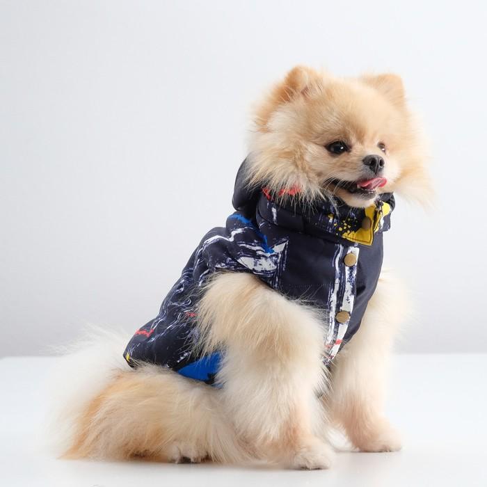 Куртка зимняя, L (ОШ 29-34, ОГ 41-47, ДС 31 см), синяя