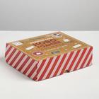 Упаковка для кондитерских изделий «Новогодняя посылка», 20 × 17 × 6 см