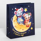 Пакет ламинированный вертикальный «Мышки на луне», M 26 × 30 × 9 см