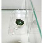 Плот для черепах пластиковый, на стенку, средний, 12 х 15 х 19 см