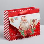 Пакет подарочный горизонтальный «Почта Деда Мороза», MS 23 × 18 × 8 см