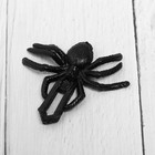 "The Velcro ® ""Spider"""