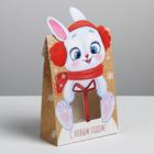 Коробка складная «Новогодние подарки», 15 × 7 × 22 см