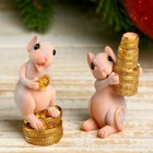 "Souvenir Polyresin ""Mishula with gold coins"" MIX 5x2,5x2,5 cm"