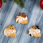 "Magnet Polyresin ""a Hamster with a cracker - good Luck"" MIX 2,1x4,8x5,2 cm"