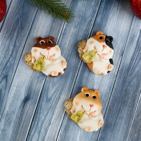 """Magnet Polyresin """"a Hamster with coins and bills"""" MIX 2,3x4,7x5,7 cm"""
