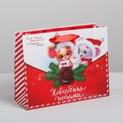Пакет ламинированный горизонтальный «Новогодняя посылка», MS 23 × 18 × 8 см