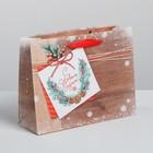 Пакет ламинированный горизонтальный «Новогоднее пожелание», MS 23 × 18 × 8 см