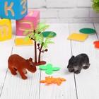 """Растущие животные набор """"Животные"""" (2 животных, 2 листика, пальма) МИКС"""