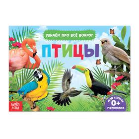 Обучающая книжка «Птицы», 18 птиц