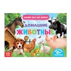 Обучающая книжка «Домашние животные», 18 животных
