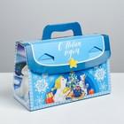 Складная коробка «Полярные мишки», 28 × 23 × 13 см