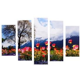 "Модульная картина ""Тюльпаны цветущие"" (2-23х52; 2-24х70; 1-24х80) 120х80см"