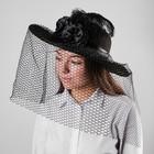 Карнавальная шляпа «Вуаль», цвет чёрный