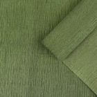 Бумага креп, простой, цвет зелёный, 0,5 х 2,5 м