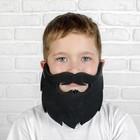 Борода черная, р-р-23*16