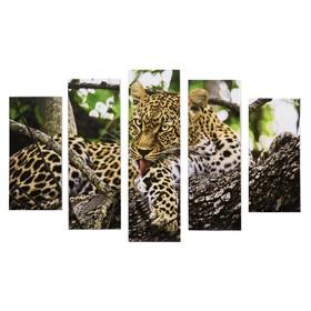 "Модульная картина ""Леопард на дереве"" (2-23х52; 2-24х70; 1-24х80) 120х80см"