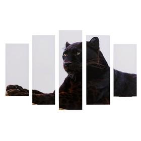 """Модульная картина """"Гордый леопард"""" (2-23х52; 2-24х70; 1-24х80) 120х80см"""