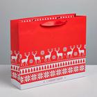 Пакет ламинированный горизонтальный «Тёплого Нового года», ML 8 × 27 × 23 см