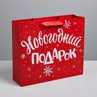 Пакет ламинированный горизонтальный «Новогодний подарок», ML 8 × 27 × 23 см