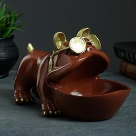 "Шкатулка для мелочей ""Бульдог"" шоколад 16х27см"