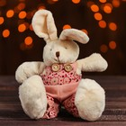 "Stuffed toy ""Bunny"" pink costume, types MIX M5435AB"